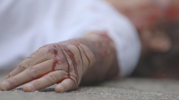 Brutal erschlagen: Der 56-jährige Eugene Mallove aus New Hampshire wird leblo...