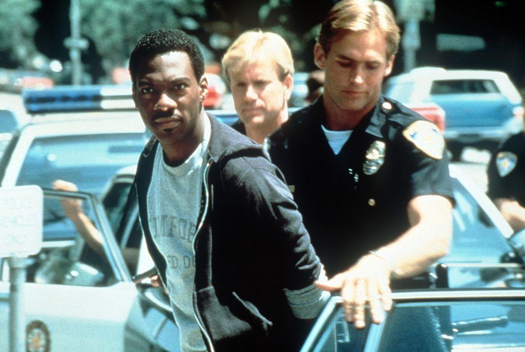 Seine Vorgesetzten haben etwas gegen die unkonventionellen Ermittlungsmethoden ihres Undercover-Mannes:  Axel (Eddie Murphy) sitzt mal wieder in der... - Bildquelle: Paramount Pictures