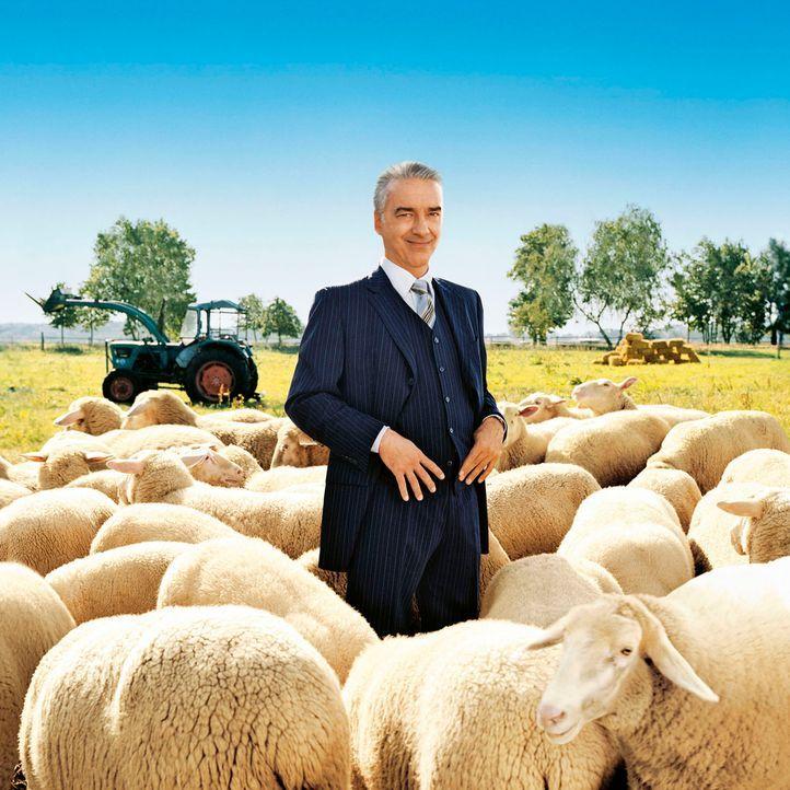 """Johannes Waller (Christoph M. Ohrt) ist """"Allein unter Bauern"""". - Bildquelle: Stephan Rabold Sat.1"""
