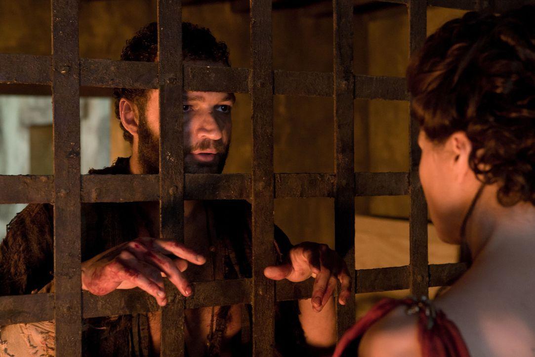 Um Drago zum Sprechen zu bringen, entwickelt Lucretia (Lucy Lawless, r.) für Ashur (Nick E. Tarabay, l.) einen infamen Plan, auf den auch prompt der... - Bildquelle: 2011 Starz Entertainment, LLC. All rights reserved.