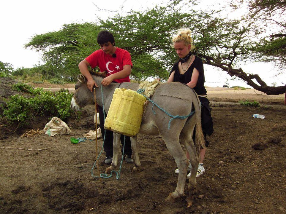 Timucin (l.) und Monique (r.) werden zu den strengsten Eltern nach Tansania geschickt ... - Bildquelle: kabel eins