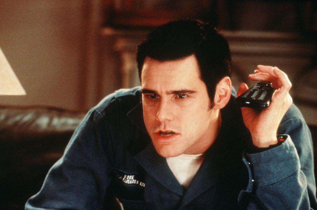 Chip Douglas (Jim Carrey) ist nicht nur hyperaktiv, chaotisch und schrill, sondern auch noch sehr, sehr anhänglich ... - Bildquelle: Columbia TriStar