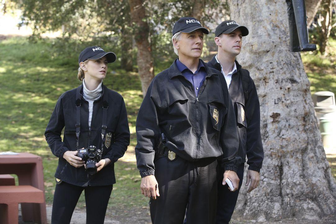 Ein Unteroffizier wurde ermordet und da der Fall Parallelen zu einem Serienkiller aufweist, muss das Team um Gibbs (Mark Harmon, M.), Bishop (Emily... - Bildquelle: Monty Brinton CBS Television