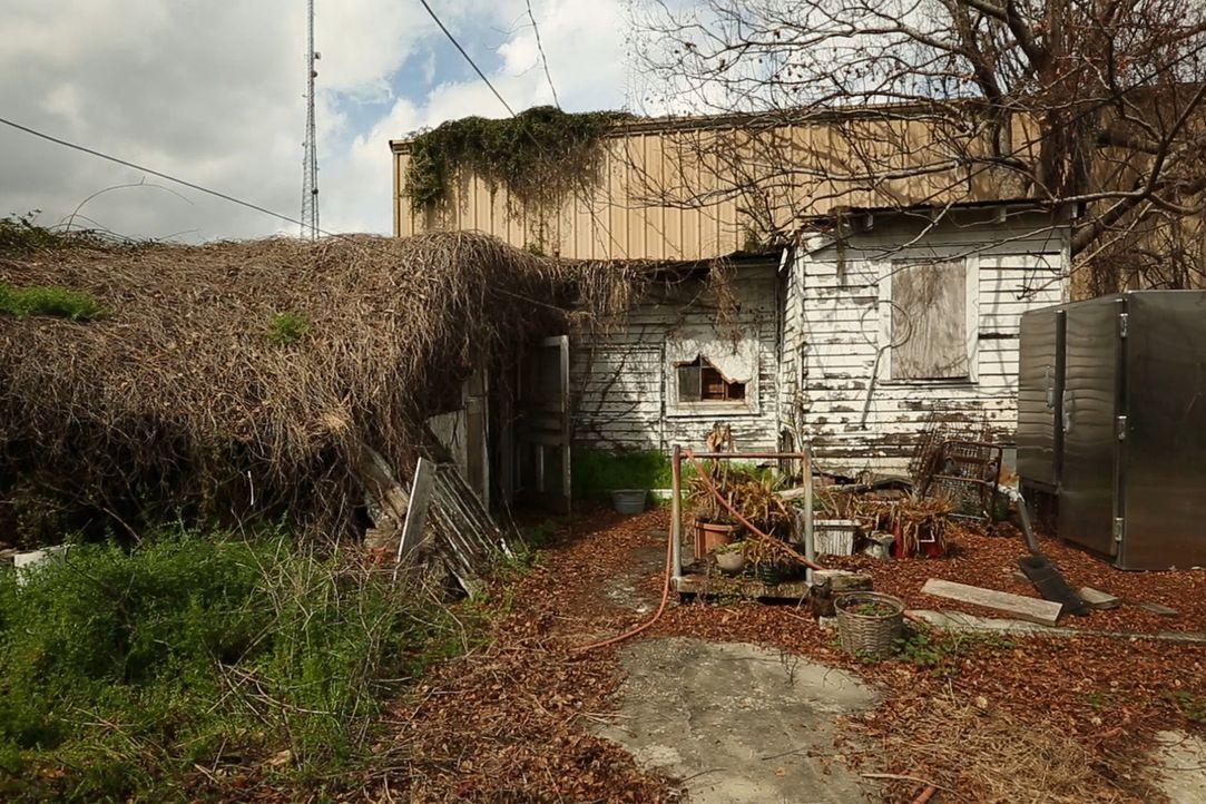 Haben sich Maria und Andy etwa zu viel vorgenommen oder werden sie es schaffen, dem Haus einen neuen Glanz zu verleihen? - Bildquelle: 2014, DIY Network's/Scripps Network's, LLC.