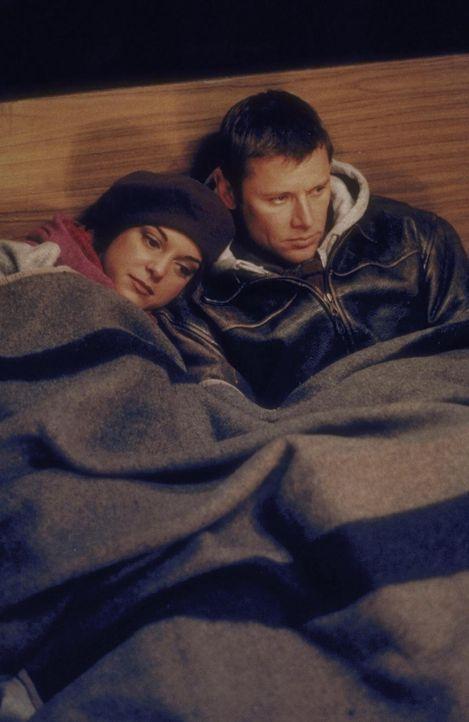 Die einzige Möglichkeit, nicht zu erfrieren: Robert Drake (Grant Show, r.) und Julie (Audie England, l.) wärmen sich unter einer Decke auf ... - Bildquelle: Trimark Pictures