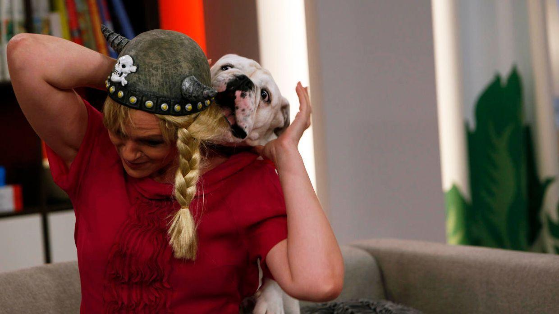 fruehstuecksfernsehen-studiohund-lotte-in-action-im-studio-062 - Bildquelle: Ingo Gauss