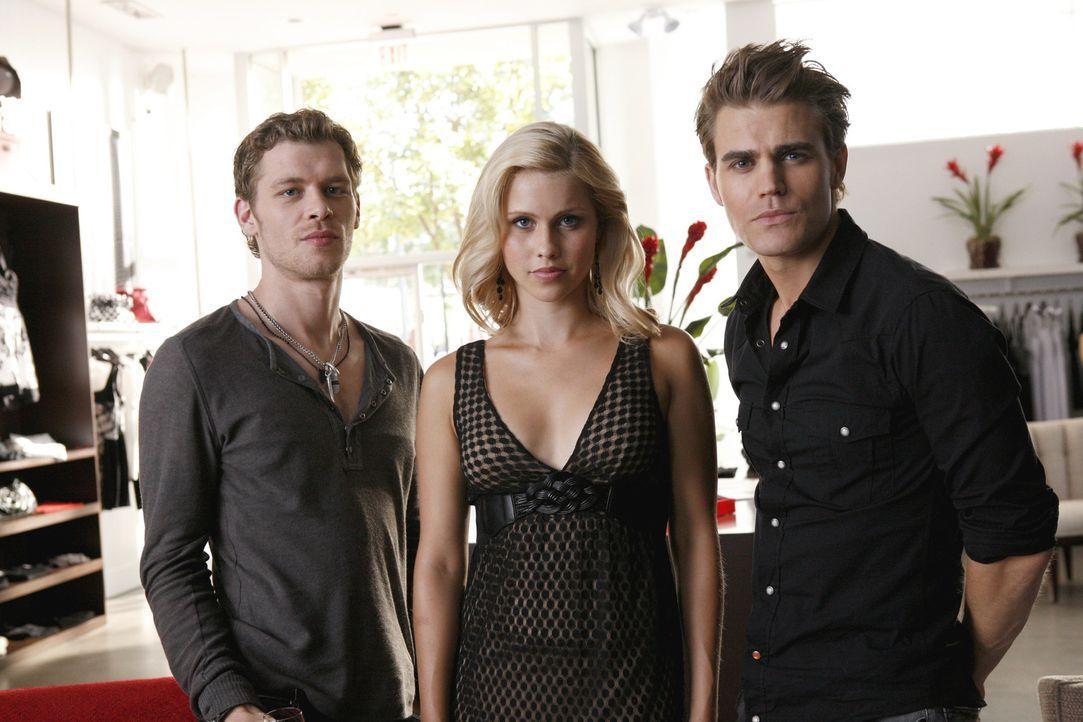 Nachdem Rebekah (Claire Holt, M.) wieder zum Leben erweckt wurde, zeigen Ihr Stefan (Paul Wesley, r.) und Klaus (Joseph Morgan, l.), was die Frau vo... - Bildquelle: 2011 THE CW NETWORK, LLC. ALL RIGHTS RESERVED.