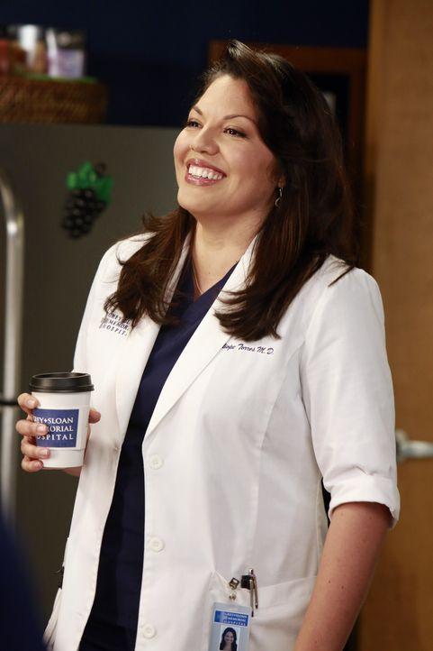 Callie (Sara Ramirez) möchte ein Knorpel-Regenationsprogramm finanziert haben und Jackson erklärt ihr, dass auch sie den offiziellen Weg gehen mus... - Bildquelle: ABC Studios