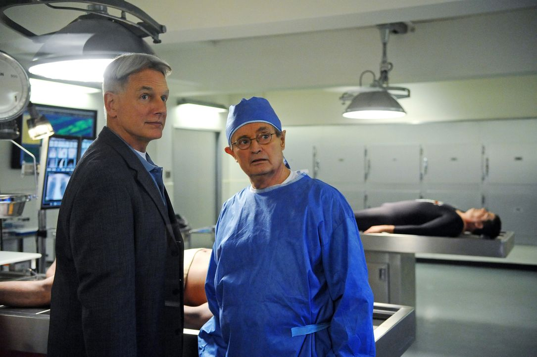 Ein neuer Mordfall beschäftigt Gibbs (Mark Harmon, l.) und Ducky (David McCallum, r.) ... - Bildquelle: 2012 CBS Broadcasting Inc. All Rights Reserved.