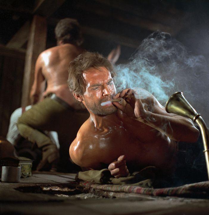 Echt harte Kerle: Cat Stevens (Terence Hill, vorne) und Hutch Bessy (Bud Spencer, hinten) fühlen sich um ihren Anteil an der Beute eines Bankraubs b... - Bildquelle: Paramount Pictures