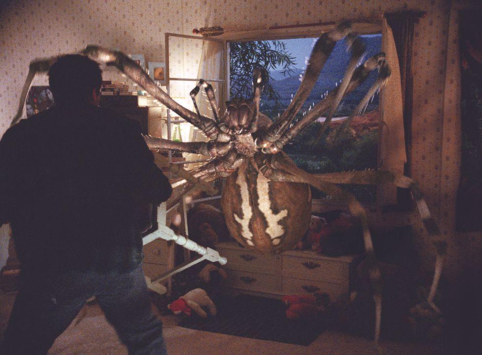 Die Spinnen sind unersättlich: Haben die Bewohner eine Chance, sich gegen die Ungeheuer zu wehren ... - Bildquelle: Warner Bros. Pictures