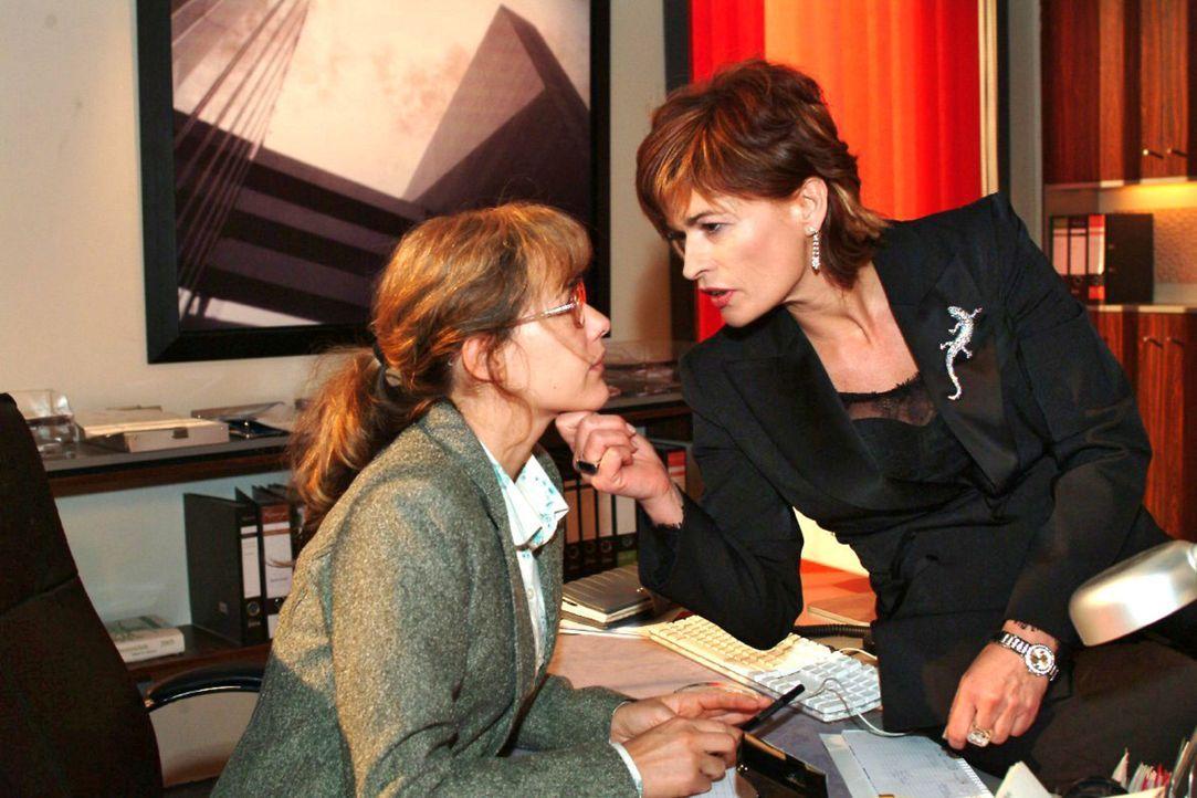 Lisa (Alexandra Neldel, l.) ist mit ihren Nerven am Ende, als Sophie (Gabrielle Scharnitzky, r.) ihr Gift versprüht. (Dieses Foto von Alexandra Neld... - Bildquelle: Noreen Flynn Sat.1