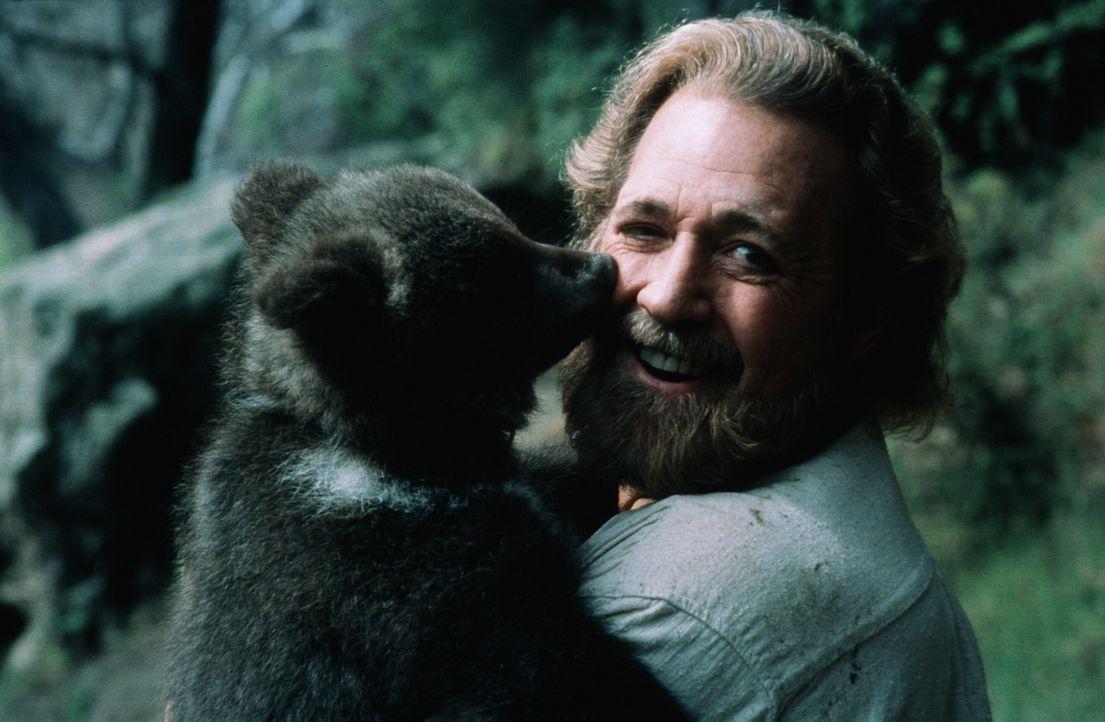 Das Bärenjunge Dudley bedankt sich bei seinem Retter, dem Einsiedler Jeremiah (Dan Haggerty) ... - Bildquelle: Miracle Entertainment