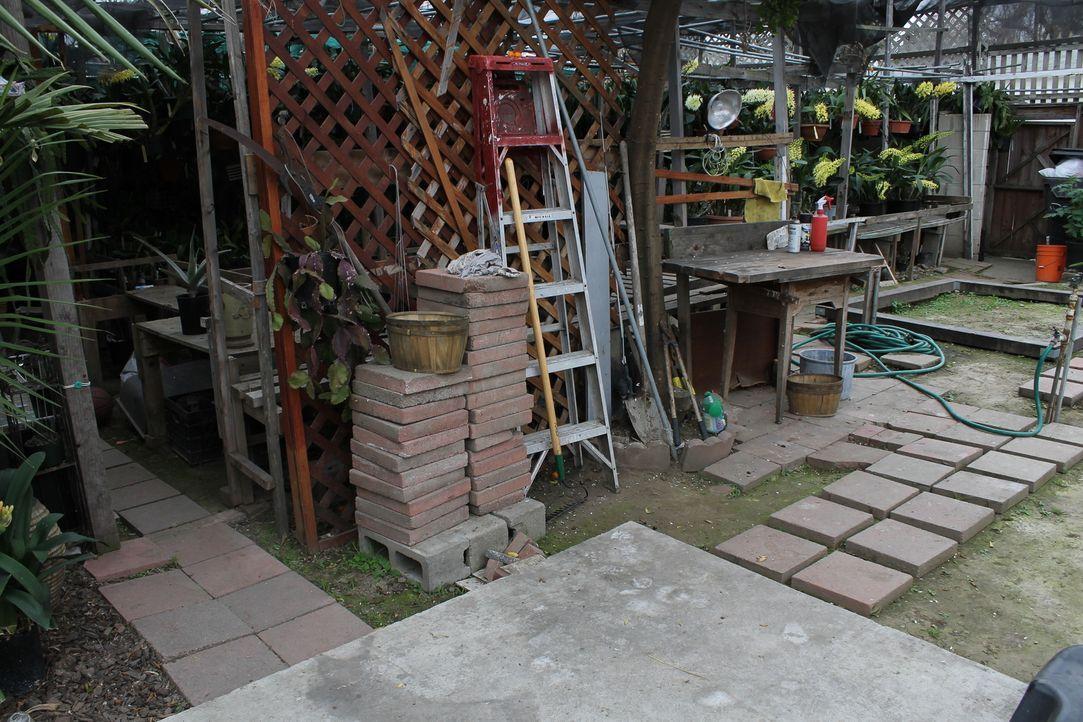 Im Garten ihres Hauses wachsen hunderte von Orchideen, die Rowenas Mutter dort gelassen hat, als sie das Haus an ihre Tochter und deren Mann verkauf... - Bildquelle: 2014, DIY Network/Scripps Networks, LLC. All RIghts Reserved.