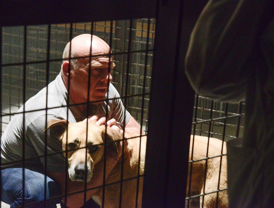 Ausgerechnet mit dem einzigen Lebewesen, das Big Jim (Dean Norris) liebt, wird er erpresst ... - Bildquelle: Brownie Harris 2015 CBS Studios Inc.