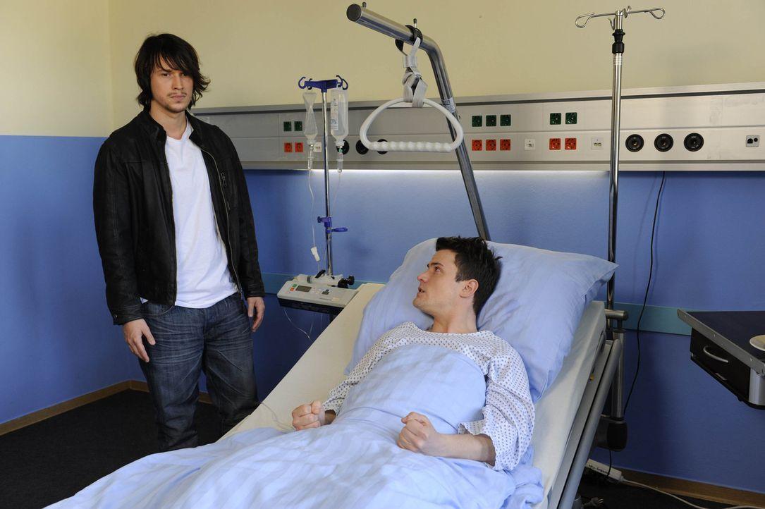 Ben (Christopher Kohn, l.) lässt Ronnie abblitzen, als dieser ihn zu einer weiteren Revanche animieren will. Stattdessen besucht er Timo (Rocco Sta... - Bildquelle: SAT.1