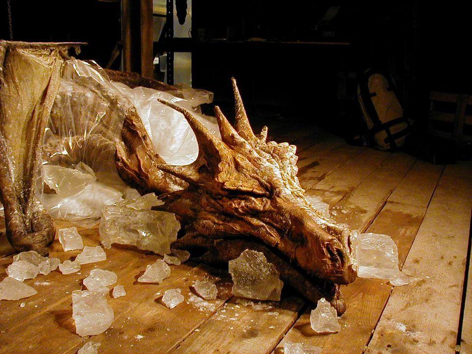 Als in Rumänien Reste eines Drachens gefunden werden, versuchen Paläontologen ein lang verschüttetes Mysterium zu lüften ...