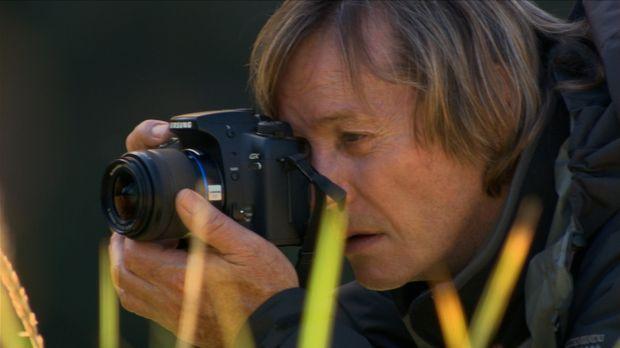 Austin Stevens ist ein anerkannter Amphibien- und Reptilienexperte sowie ein...