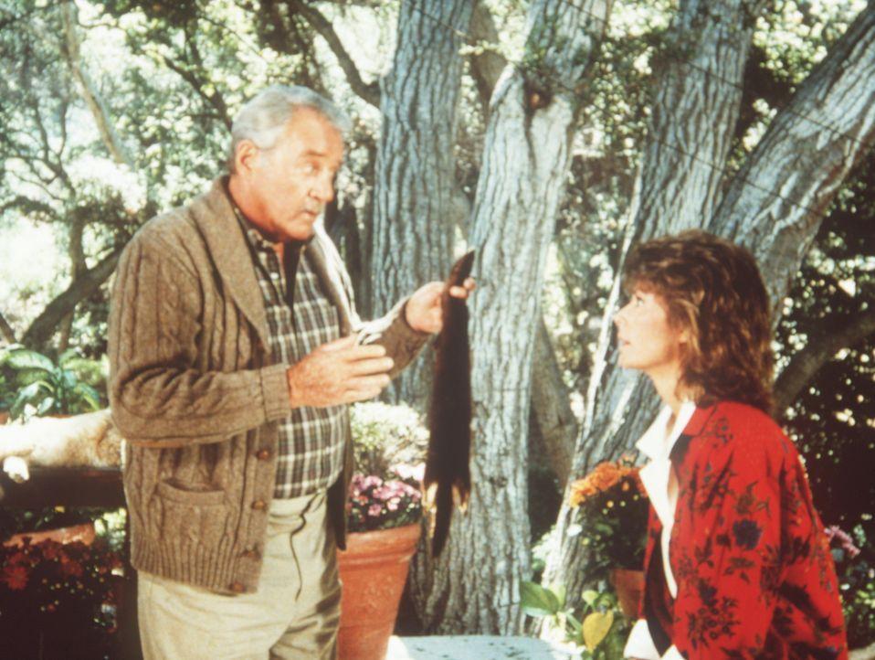 Harry W. Thornton (Howard Duff, l.), der Gründer des Geheimdienstes, weiht Amanda (Kate Jackson) in seine verdeckten Aufgaben ein ...