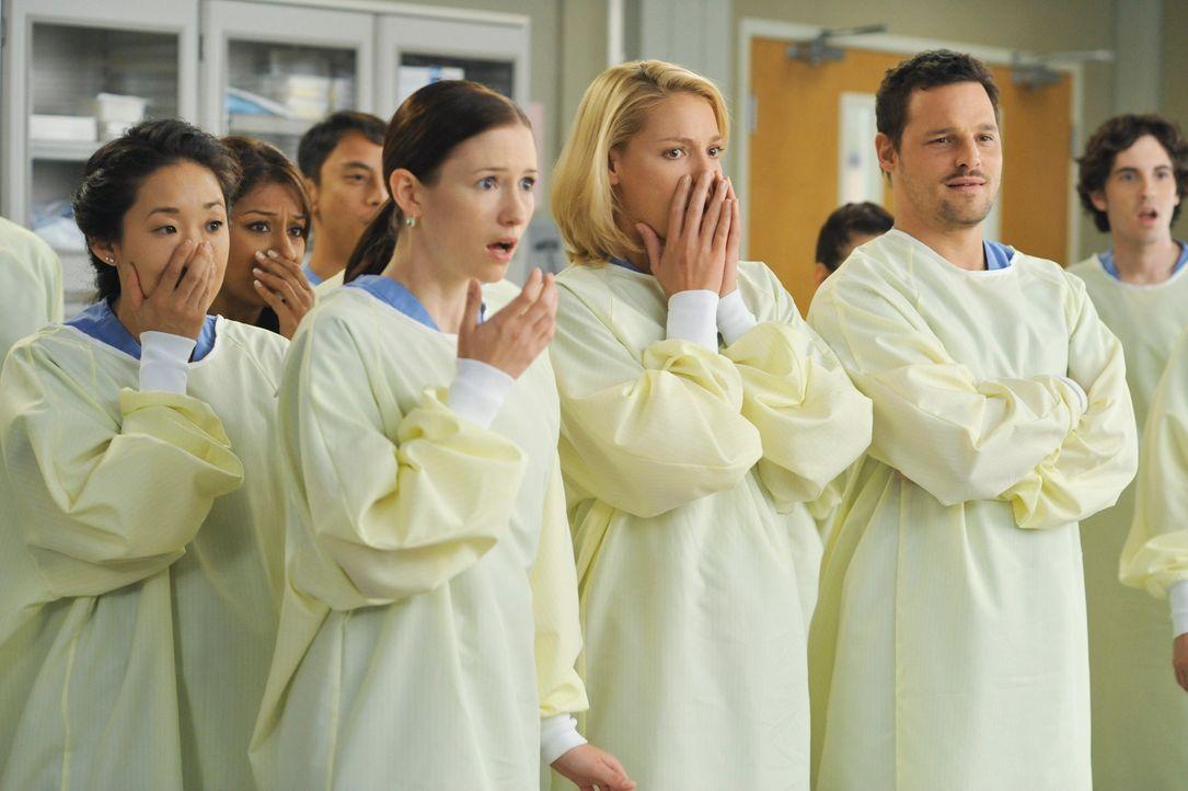 Sind geschockt über die Lehrmethode, die Owen Hunt an den Tag legt: Cristina (Sandra Oh, vorne l.), Lexie (Chyler Leigh, vorne 2.v.l.), Izzie (Kath... - Bildquelle: Touchstone Television