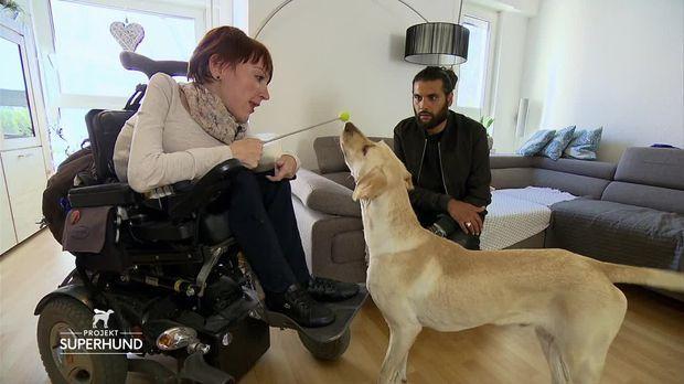 Projekt Superhund - Helfer Auf Vier Pfoten - Projekt Superhund - Helfer Auf Vier Pfoten - Sarah Und Fito Sind Ein Eingespieltes Team