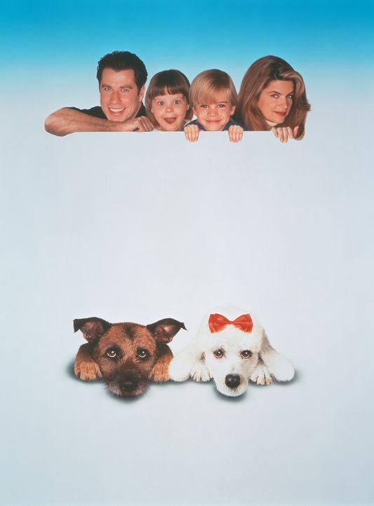 James (John Travolta, l.), Julia (Tabitha Lupien, 2.v.l.), Mikey (David Gallagher, 2.v.r.), Mollie (Kristie Alley, r.), Straßenhund Rocks (unten l.... - Bildquelle: TriStar Pictures