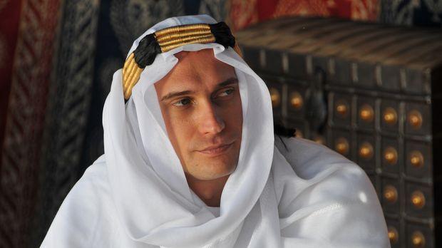 Lawrence von Arabien (Foto) wird von einigen als ein militärisches Genie im e...