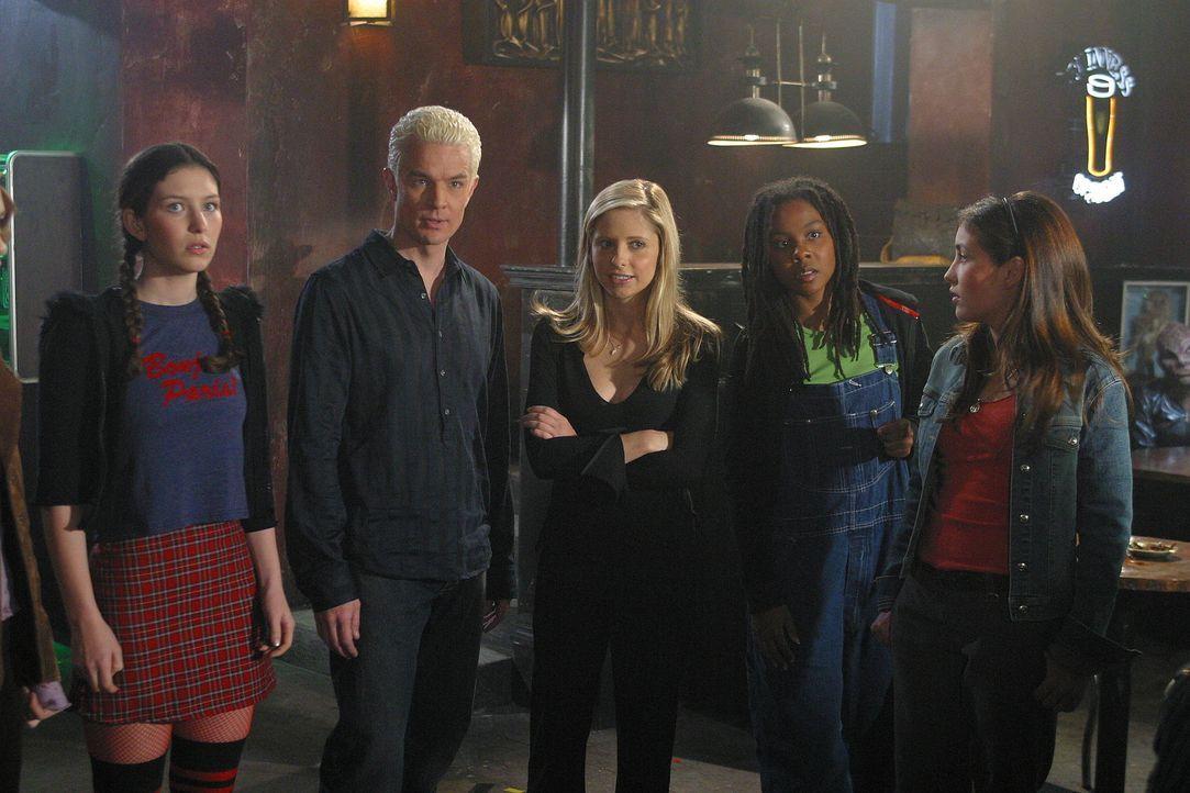 Buffy (Sarah Michelle Gellar, M.) holt sich die Unterstützung von Spike (James Marsters, 2.v.l.), um den potentiellen Jägerinnen ein anschauliches i... - Bildquelle: TM +   Twentieth Century Fox Film Corporation. All Rights Reserved.