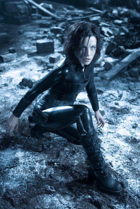 Wütend, dass sie von ihrer eigenen Familie verraten wurde, macht sich Vampirin Selene (Kate Beckinsale) mit Michael auf die Suche, die dunklen Gehei... - Bildquelle: Sony Pictures Television International. All Rights Reserved.