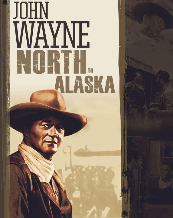 North to Alaska - Artwork - Bildquelle: 1960 Twentieth Century Fox Film Corporation.