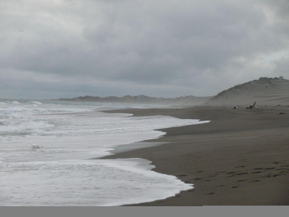 Es gibt kein Entkommen! Mitten im Ozean liegt eine Insel, auf der schwierige Jugendliche unter drastischen Strafen erzogen werden sollen ...