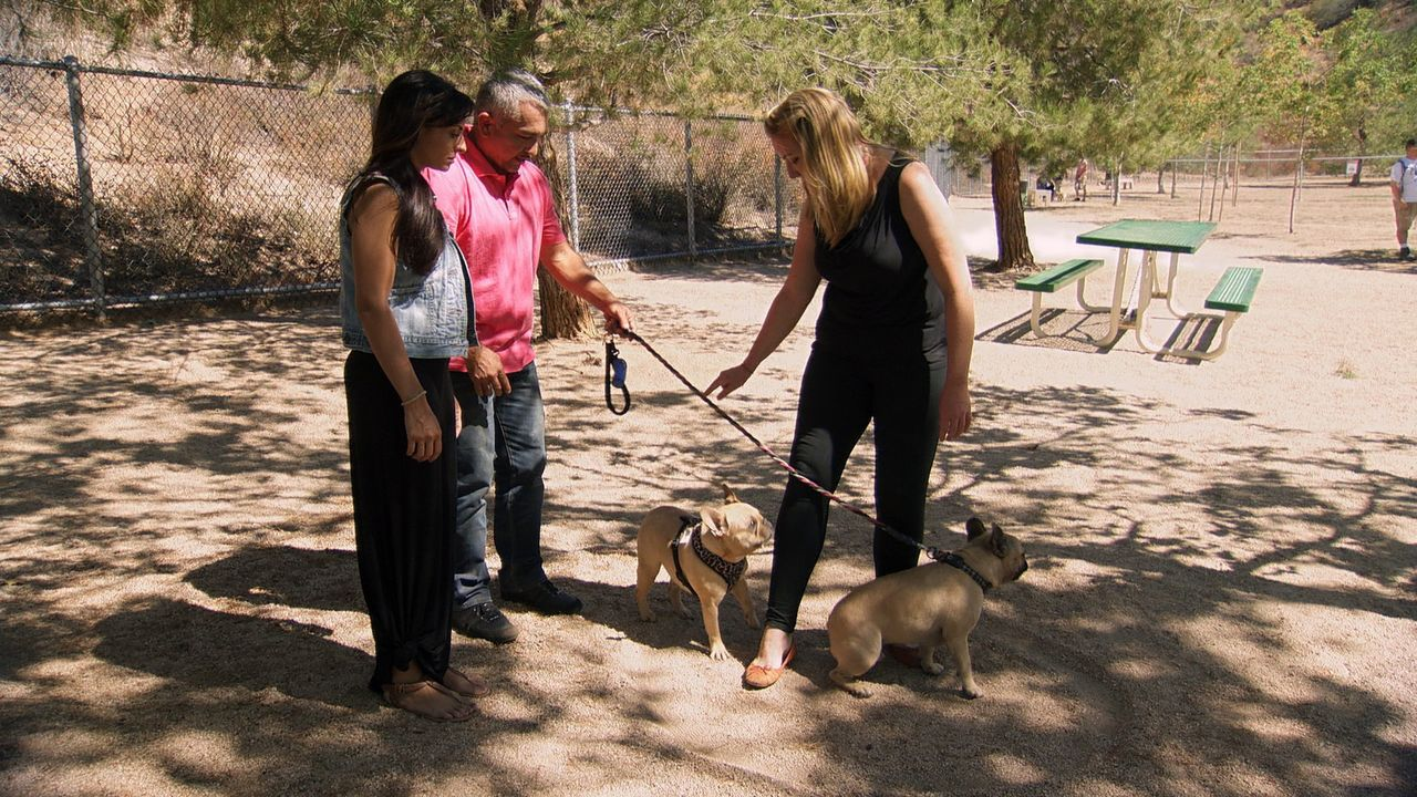 Katherine (r.) würde gerne mit ihrer Bella in die Hundegruppe ihrer Freundin Jennifer (l.) gehen, doch die aggressive Hündin hält es mit anderen Hun... - Bildquelle: NGC/ ITV Studios Ltd
