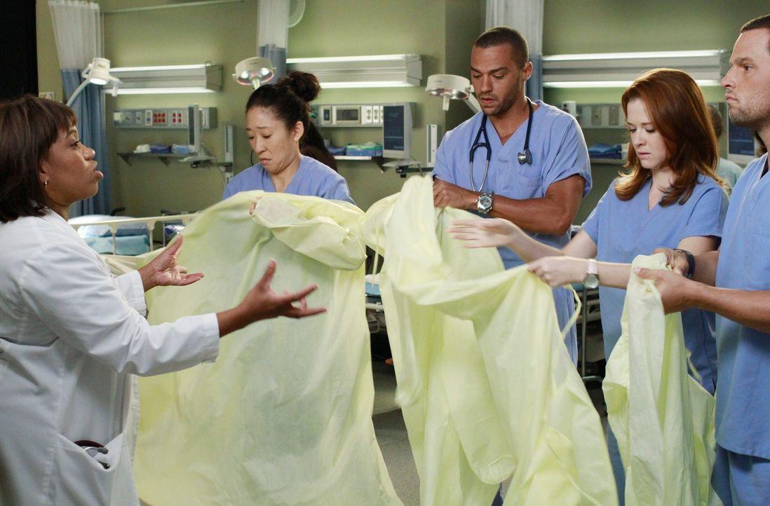 Bailey (Chandra Wilson, l.) hat eine ganz besondere Aufgabe für Jackson (Jesse Williams, M.), April (Sarah Drew, 2.v.r.), Alex (Justin Chambers, r.)... - Bildquelle: ABC Studios