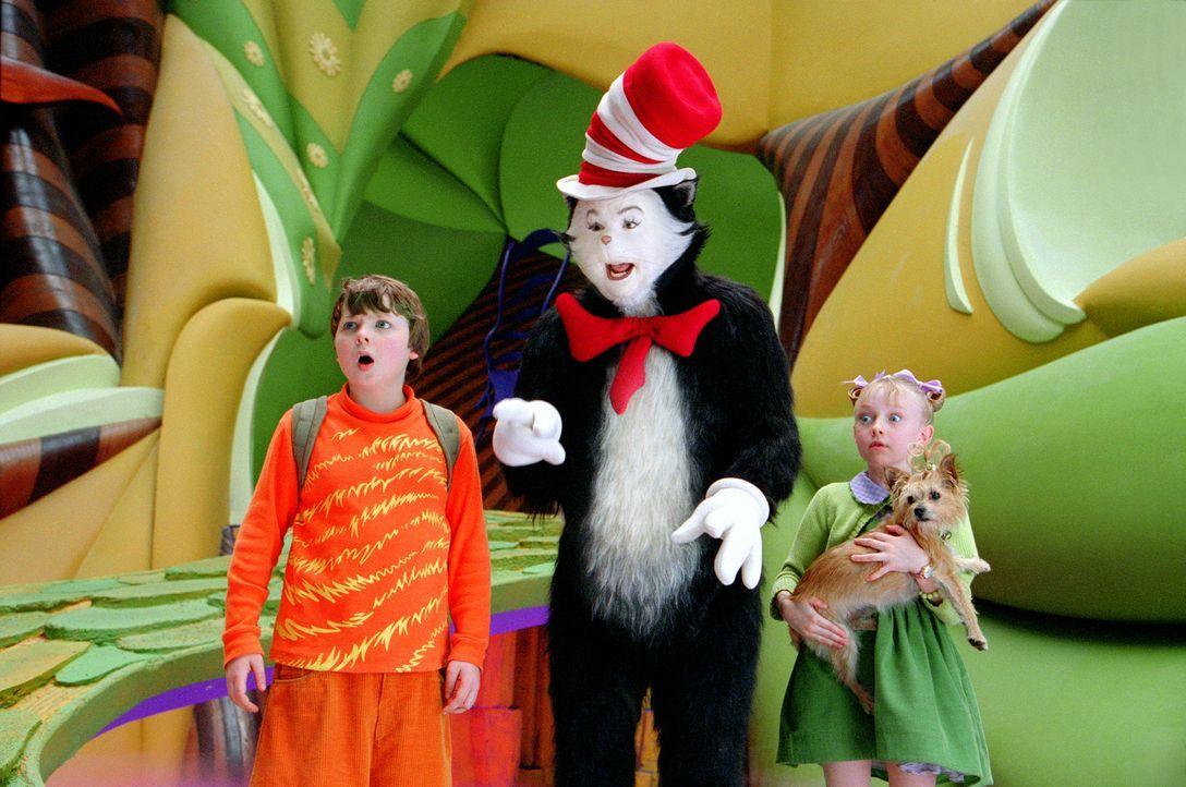 Der kleine Conrad Walden (Spencer Breslin, l.) und seine Schwester Sally (Dakota Fanning, r.) verbringen einen langweilen, verregneten Nachmittag zu... - Bildquelle: TM &   2003 DreamWorks LLC. All Rights Reserved.