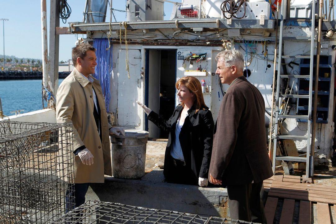 Ermitteln in einem neuen Mordfall: Tony (Michael Weatherly, l.), Gibbs (Mark Harmon, r.) und Special Agent Abigail Borin (Diane Neal, M.) ... - Bildquelle: CBS Television