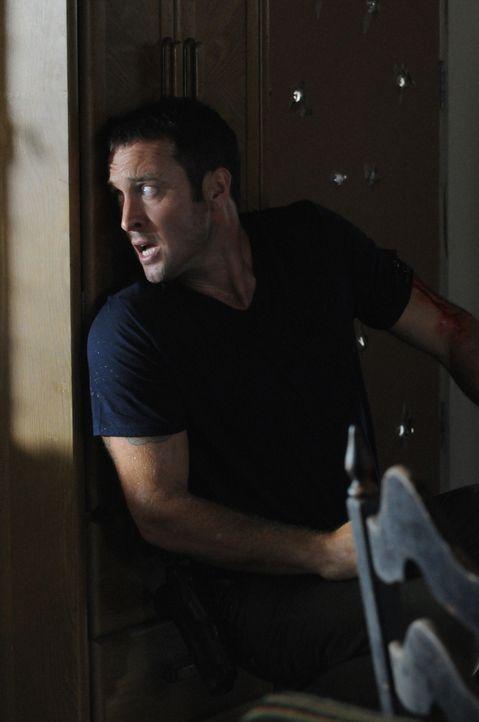 Bei den Ermittlungen in einem neuen Fall, setzt Steve (Alex O'Loughlin) sein eigenes Leben aufs Spiel ... - Bildquelle: 2013 CBS BROADCASTING INC. All Rights Reserved.