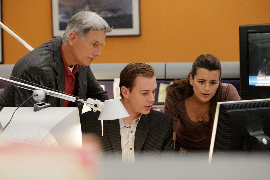 Ermitteln im Fall des ermordeten Captain Rankin: Gibbs (Mark Harmon, l.), McGee (Sean Murray, M.) und Ziva (Cote de Pablo, r.) ... - Bildquelle: CBS Television