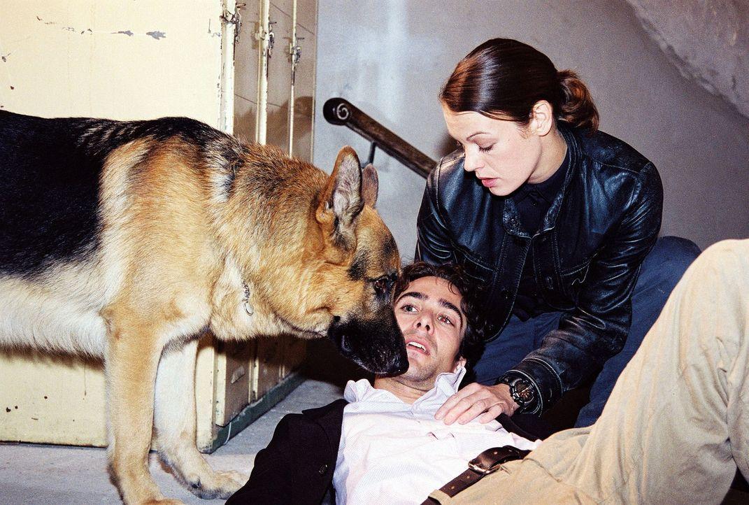 Niki (Elke Winkens, r.) ist sich nicht sicher, ob Marc (Alexander Pschill, l.) lebensgefährlich verletzt wurde. - Bildquelle: Ali Schafler Sat.1