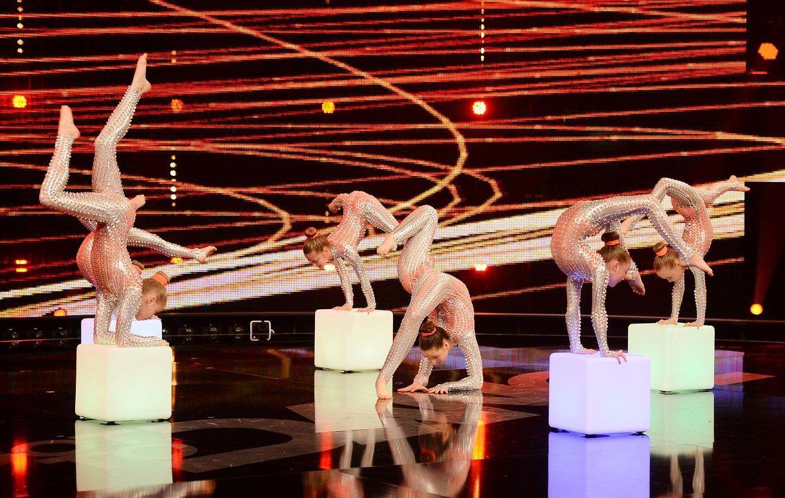 Got-To-Dance-Showgirls-03-SAT1-ProSieben-Willi-Weber - Bildquelle: SAT.1/ProSieben/Willi Weber