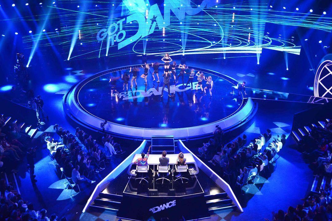 Got-To-Dance-Diced13-17-SAT1-ProSieben-Willi-Weber - Bildquelle: SAT.1/ProSieben/Willi Weber