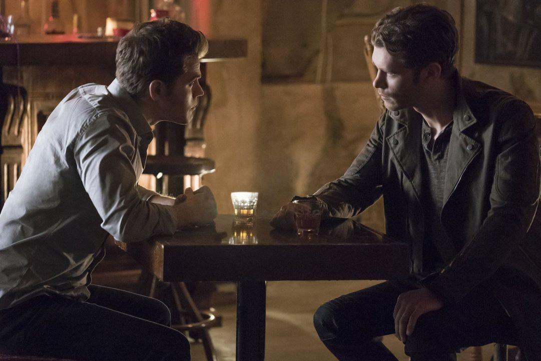 Während Stefan (Paul Wesley, l.) in New Orleans auf Klaus (Joseph Morgan, r.) trifft, machen Damon und Bonnie Bekanntschaft mit einer mysteriösen Ge... - Bildquelle: Warner Bros. Entertainment, Inc.