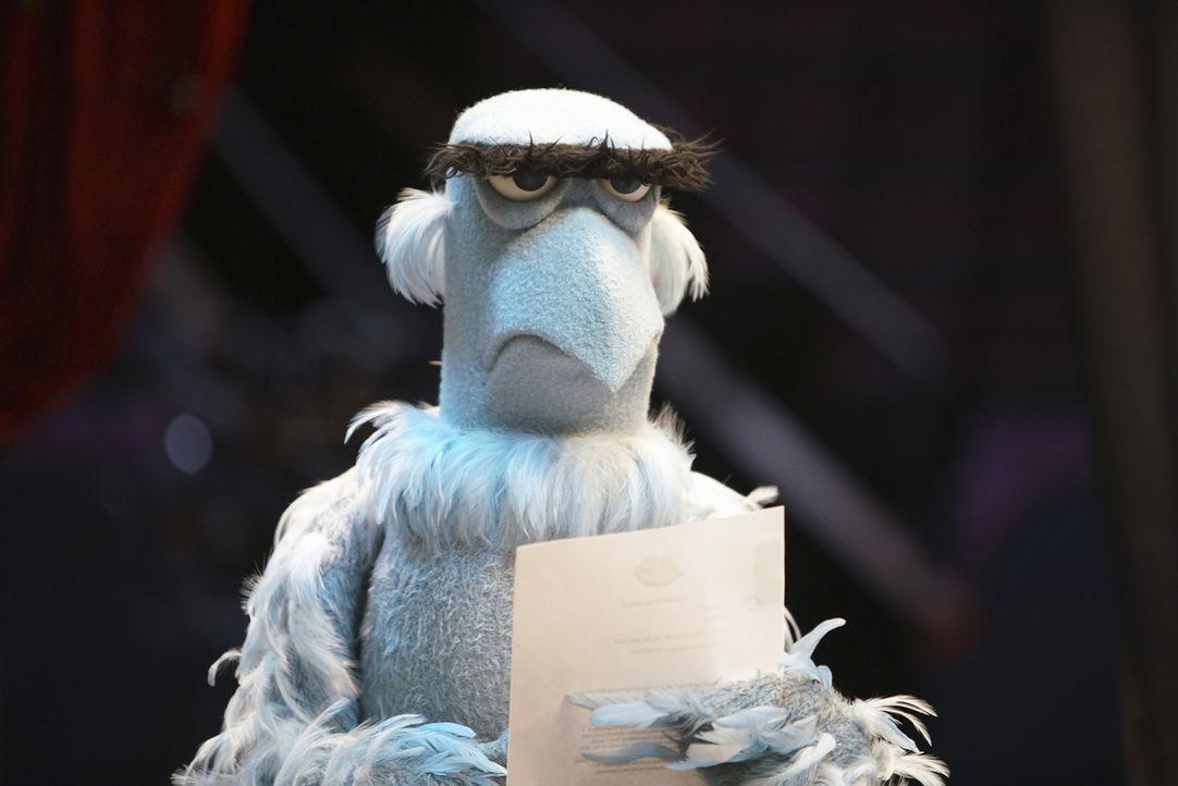 Kann nicht fassen, was Miss Piggy auf dem roten Teppich passiert ist: Sam, der Adler ... - Bildquelle: Andrea McCallin ABC Studios