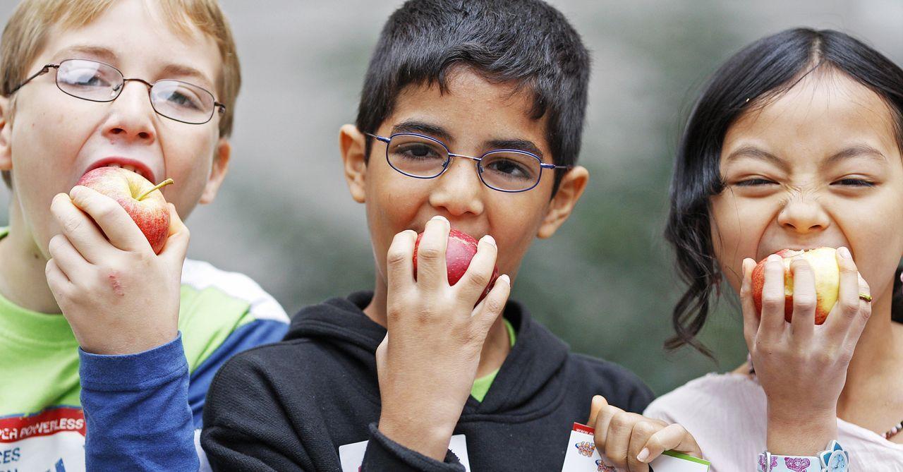 Kinder beissen in Äpfel - Bildquelle: dpa