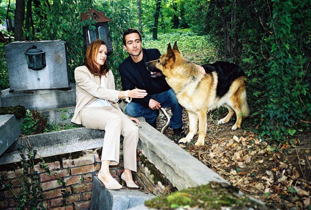 Rex und Marc (Alexander Pschill, r.) können Veronika Ullmer (Nicole Beutler, l.) in letzter Minute auf dem Wiener Zentralfriedhof retten. Sie lag be... - Bildquelle: Ali Schafler Sat.1