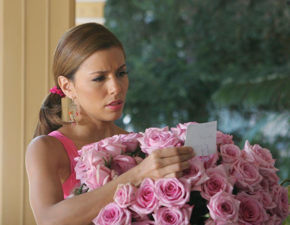 Gabrielle (Eva Longoria) ist davon überzeugt, dass Carlos ihre neue Beziehung mit Bill sabotieren möchte, indem er ihr anonym Blumen schickt. Doch d... - Bildquelle: 2005 Touchstone Television  All Rights Reserved
