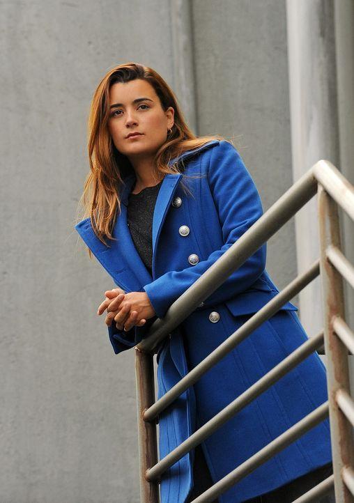 Gemeinsam mit ihren Kollegen bekommt Ziva (Cote de Pablo) den Auftrag, die Tochter des Verteidigungsministers von Belgravien zu beschützen ... - Bildquelle: CBS Television