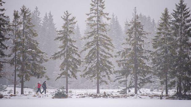 Weißes Band, grüne Landschaft - Wintertourismus im Klimawandel