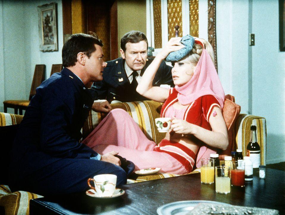 Schließlich finden Tony (Larry Hagman, l.) und Roger (Bill Daily, M.) Jeannie (Barbara Eden, r.) eingeschlossen in einer Flasche voller Alkohol - un... - Bildquelle: Columbia Pictures