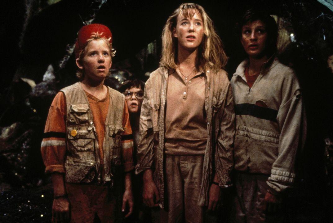 Für die geschrumpften Kinder (v.l.n.r.) Ron (Jared Rushton), Nick (Robert Oliveri), Amy (Amy O'Neill) und Russ (Thomas Wilson Brown) wird der Vorgar... - Bildquelle: Walt Disney Pictures