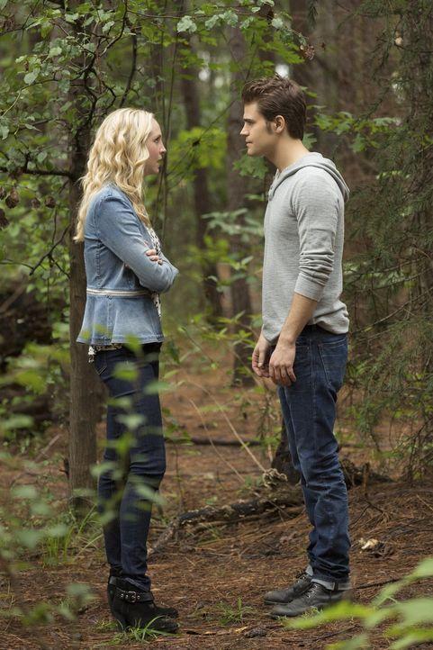 Als Caroline (Candice Accola, l.) erfährt, warum Enzo sich in Gefangenschaft befindet, spitzt sich die Beziehung zu Stefan (Paul Wesley, r.) immer w... - Bildquelle: Warner Bros. Entertainment, Inc